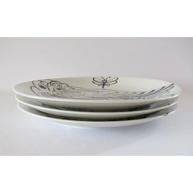 Piero Fornasetti Uccelli Calligrafici Bird Plate #6 C.1962 For Sale - Image 12 of 13