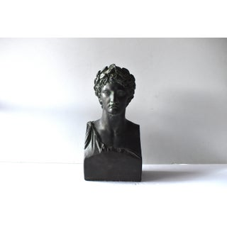 Vintage Bronzed Plaster Greek Apollo Bust Preview