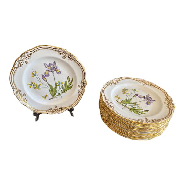 Spode English Dinner Stafford Flowers Bone Plates - 14 Pieces For Sale