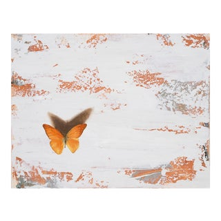 Abstract and Realistic Butterfly Painting by Alex Bauwens For Sale