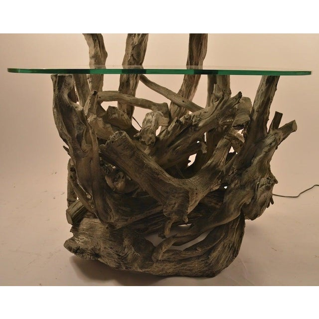 Large Driftwood Lamp Table or Floor Lamp For Sale In New York - Image 6 of 7