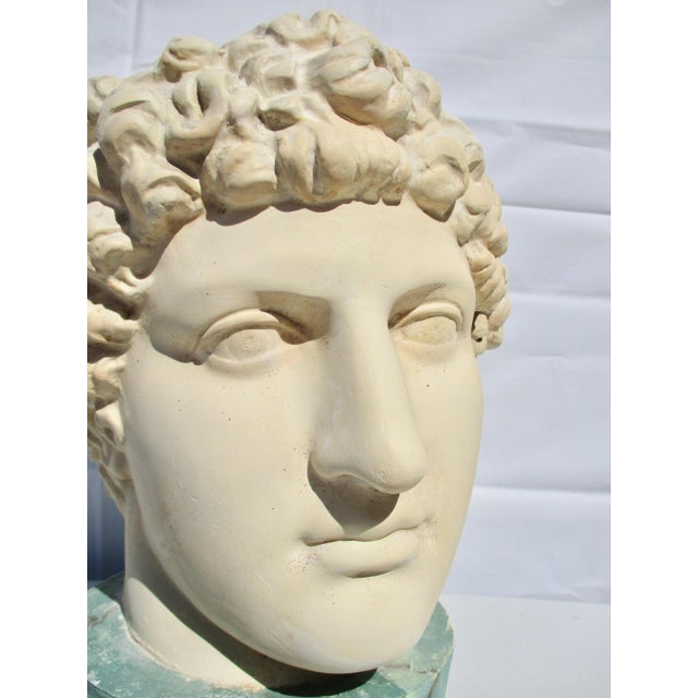 Cast in Plaster , a Gallery head of a Greek Youth. Head and base cast together with the base being faux marbled in green...