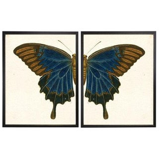 "Split Blue and Brown Butterfly - 38"" X 25"" For Sale"