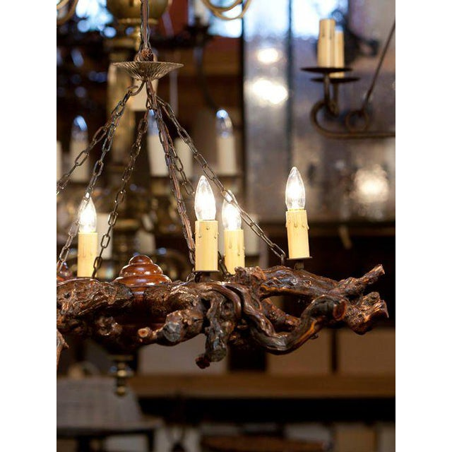 Rustic Gnarled Reclaimed Wood Chandelier with Six Lights from Belgium, circa 1950 For Sale - Image 10 of 10