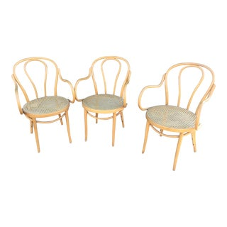Vintage Caned Bentwood Chairs - Set of 3