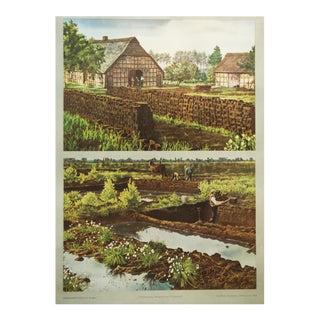 German vintage peat removal school poster
