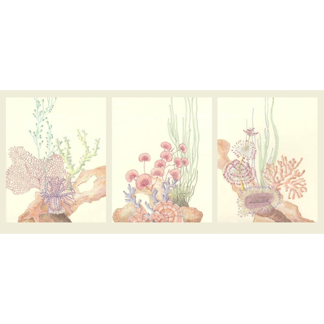 Contemporary Coral Reef Acrylic Triptych Painting by Allison Cosmos - Set of 3 For Sale - Image 11 of 11