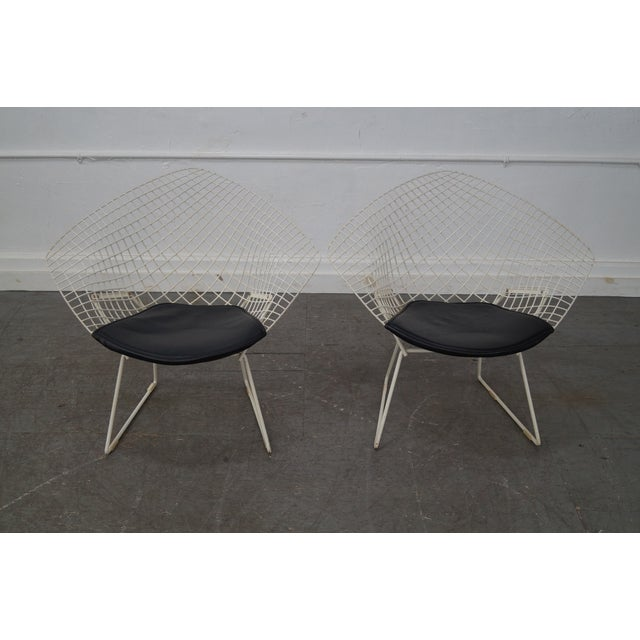 Harry Bertoia for Knoll Lounge Chairs - Pair - Image 3 of 10