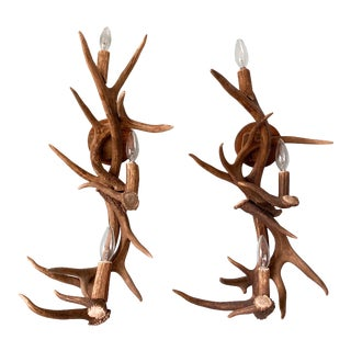 20th Century Deer Antler Electric Wall Sconces - a Pair For Sale