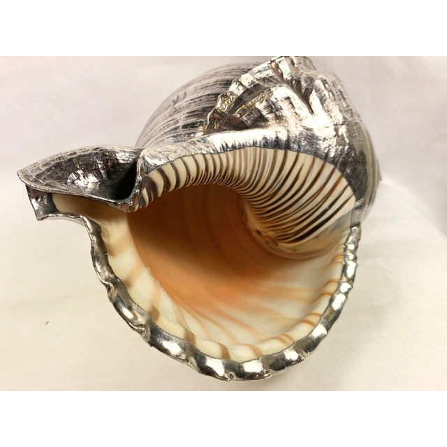 Silver Mid 20th Century Sterling Silver Coated Conch Shell For Sale - Image 8 of 11