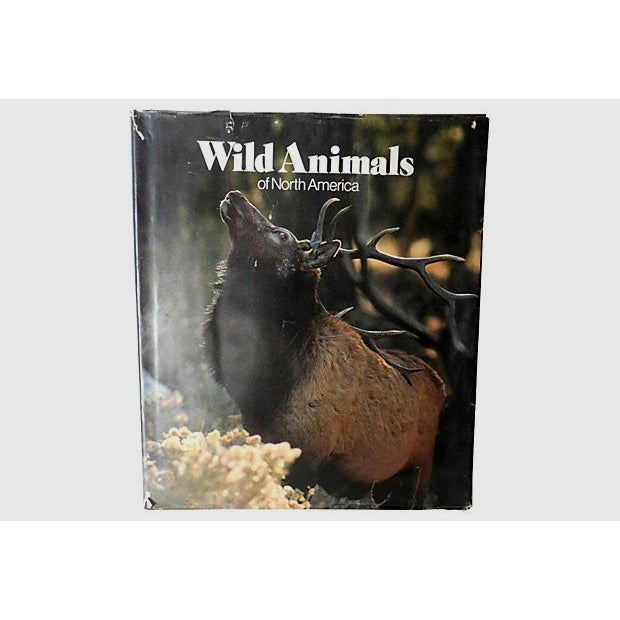 Wild Animals of North America, 1st Edition - Image 2 of 10