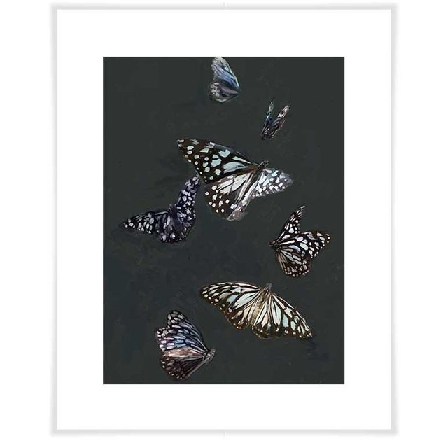 Cathy Walters so beautifully captures the intricate patterns and depth of these fluttering beauties at dusk.Our canvas...
