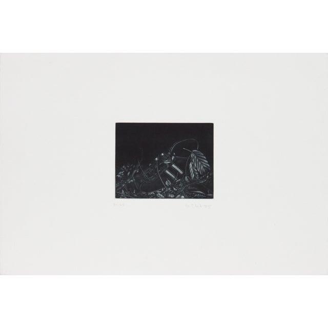 Artist: Gerde Ebert, German (1947 - ) Title: Sneaker Year: 1975 Medium: Mezzotint, signed and numbered in pencil Edition:...