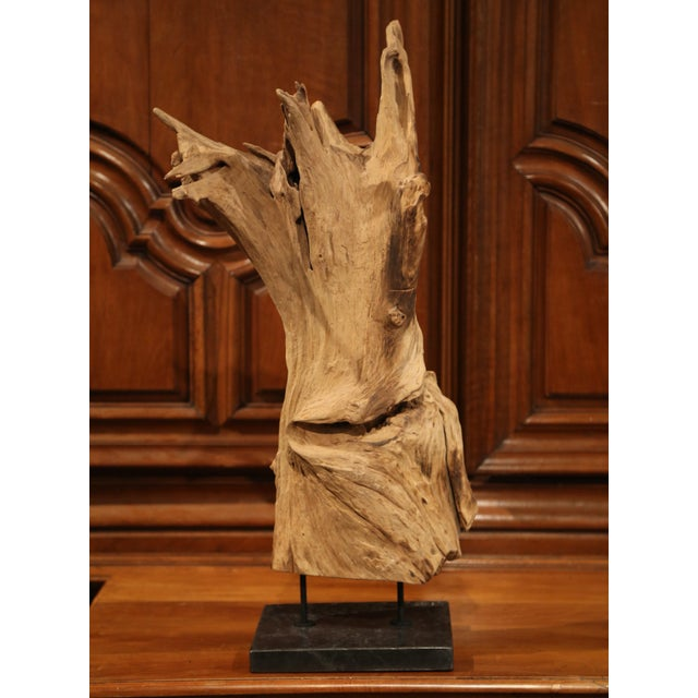 2000 - 2009 Large Antique Driftwood Sculpture on Green Marble Base For Sale - Image 5 of 8