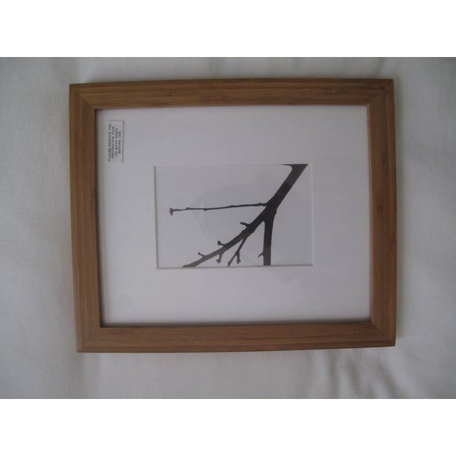 Picturewall Bamboo Frames - Set of 9 - Image 7 of 10