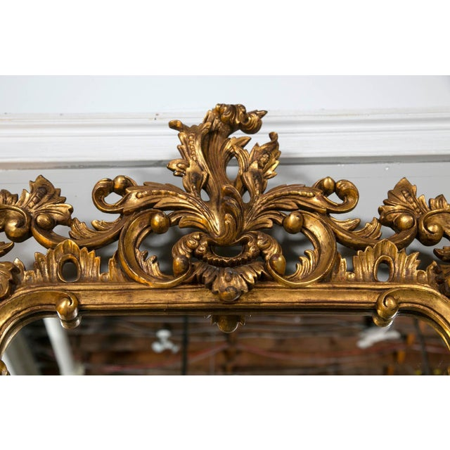 Chippendale-Style Giltwood Carved Mirrors - A Pair For Sale - Image 5 of 8