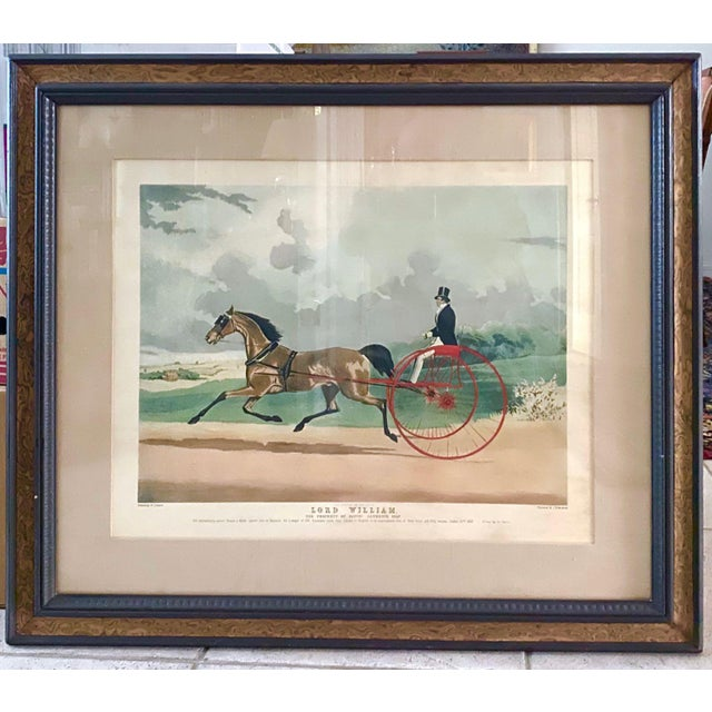 """Lord William"" Trotting Horse 1845 Aquatint For Sale - Image 13 of 13"