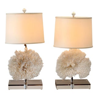 Pair of Coral Table Lamps on Lucite Base