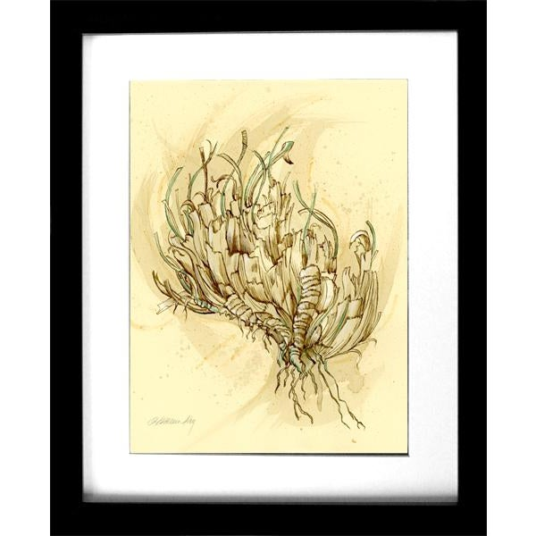 Natural History Botanical Pen and Ink Drawing, Plant Life 2 by Kathleen Ney For Sale In Seattle - Image 6 of 7