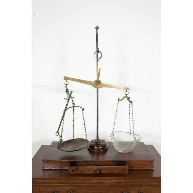 19th Century French Salt Scale With Walnut Base For Sale - Image 11 of 12