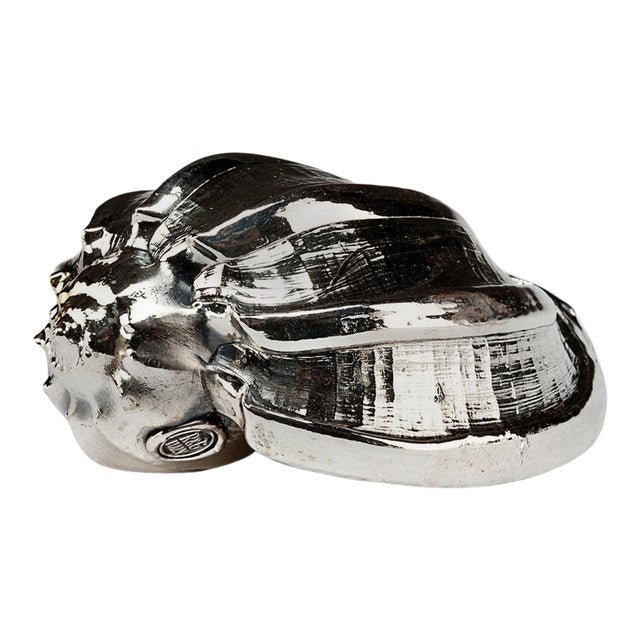 Silvered Sea Shell Harpa Major For Sale
