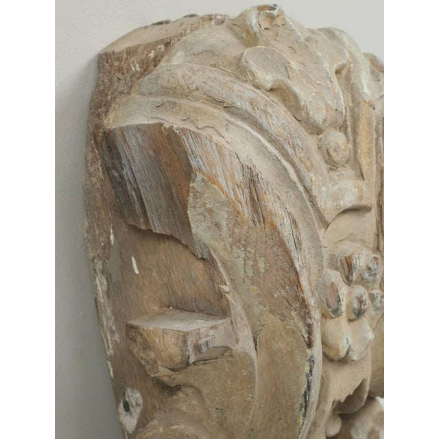 White Antique Italian Carved Decorative Architectural Element For Sale - Image 8 of 10