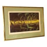 Image of Botanical Print W. Dempsey Artist Proof Framed For Sale