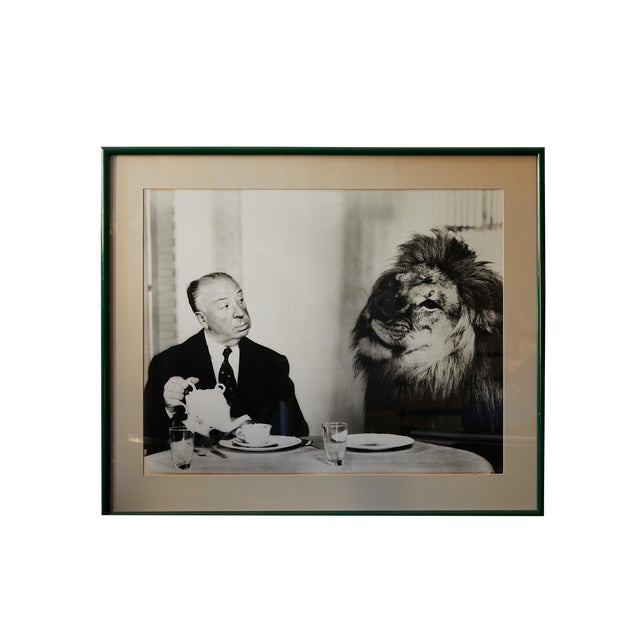 Photograph of Alfred Hitchcock and m.g.m. Lion by Clarence Sinclair Bull For Sale