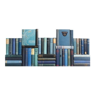 Vintage Blue Decorative Book Wall - Set of 50 For Sale