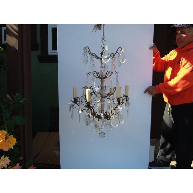 French Bronze and Crystal Cage Style Chandelier For Sale - Image 13 of 13