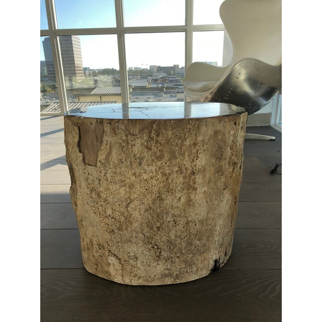 Restoration Hardware Petrified Fossilized Wood Coffee Table Stool For Sale In Los Angeles - Image 6 of 7