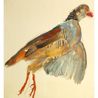Vintage French Gouache - Game Bird Specimen For Sale