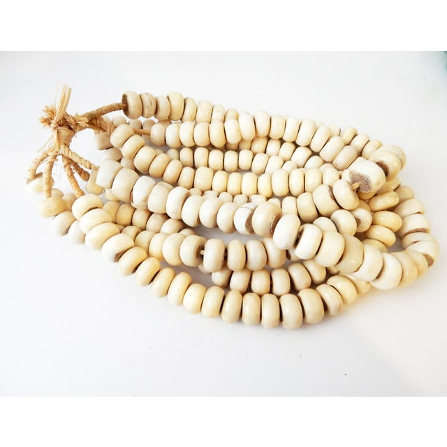 Currency Bone Trade Beads - Set of 5 - Image 4 of 7
