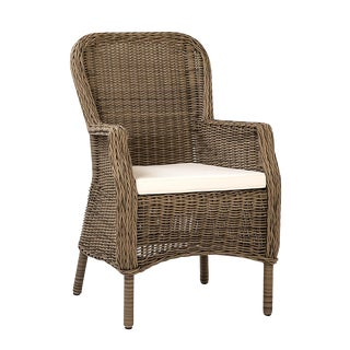 Shandy Outdoor Faux Rattan Chair For Sale