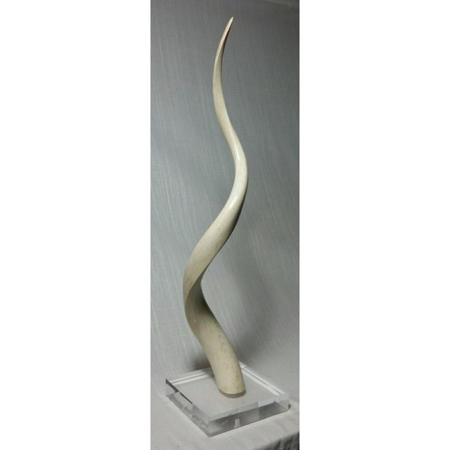Primitive Kudu Horn Inner Bone on Lucite For Sale - Image 3 of 5