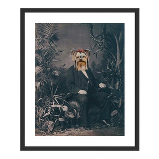 Yorkshire Terrier by Anja Wuelfing in Black Frame, Small Art Print For Sale