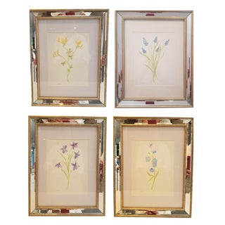 Christine Frisbee Silvered Framed Botanical Watercolor Paintings - Set of 4 For Sale