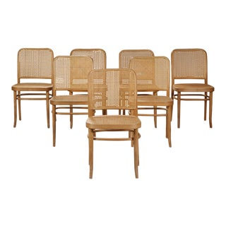 Set of Six Bentwood Dining Chairs Josef Hoffmann Style For Sale