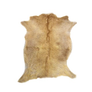 """Handmade Goat Skin Pelt - 2'6"""" x 3'3"""""""
