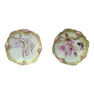 Antique Home Painted French Limoges Plates - a Pair For Sale
