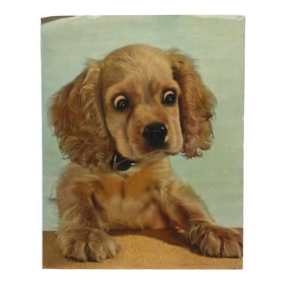 "1950s Vintage ""Little Puppy"" Original Animal Color Lithograph Print For Sale"