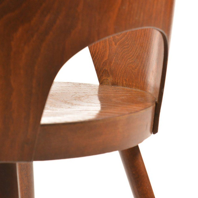 1950s Mid-Century Armchair by Oswald Haerdtl for TON For Sale - Image 5 of 7