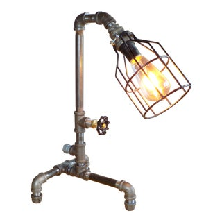 Hand-Crafted Industrial Cage Light . Desk / Accent Lamp