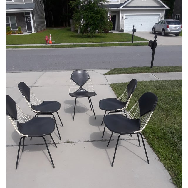 Mid-Century Herman Miller Ames Chairs - Set of 5 For Sale In Savannah - Image 6 of 7