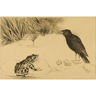 Black Bird & Frog Lithograph For Sale