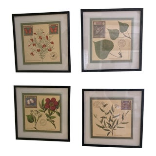 Botanical Post Cards in Black Frames - Set of 4 For Sale