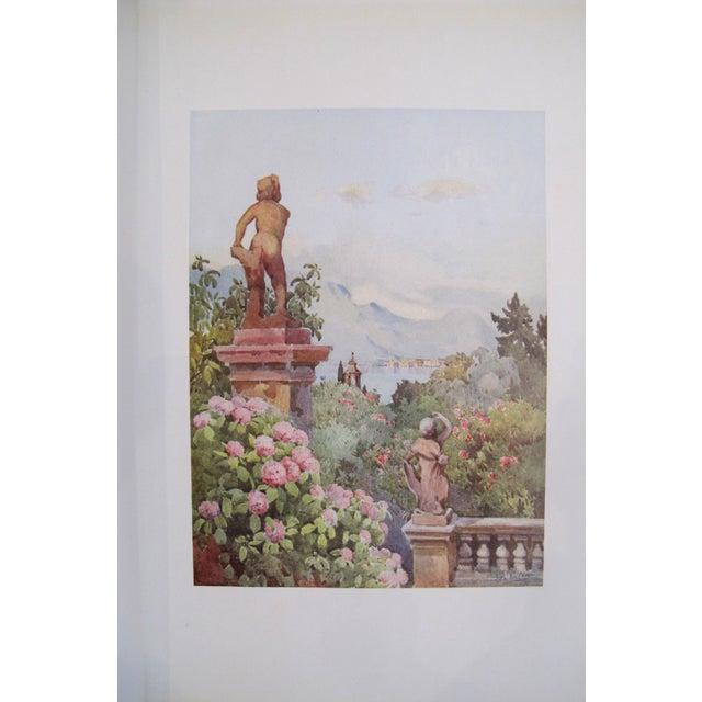 1905 Ella du Cane Print, Hydrangeas, Isola Bella, Lago Maggiore - Image 2 of 4