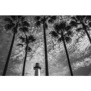 Jason Mageau Palm Trees & The Lighthouse Photograph For Sale