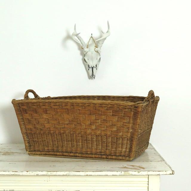 French Market Basket - Image 5 of 7