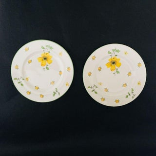 Royal Victoria Fine Bone China Salad Plates - A Pair Preview